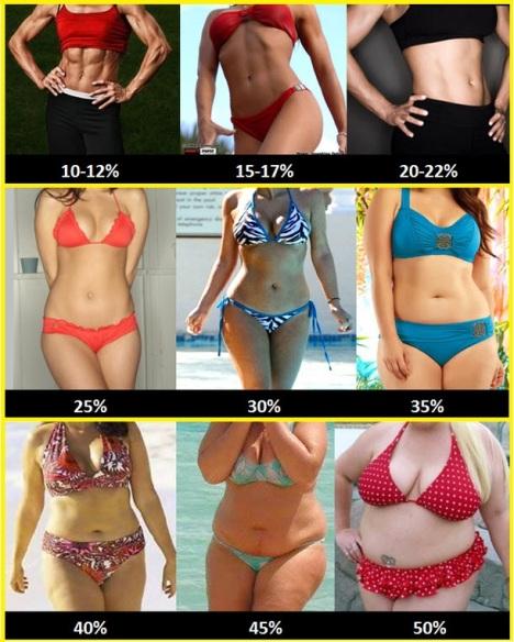 nivel grasa mujeres