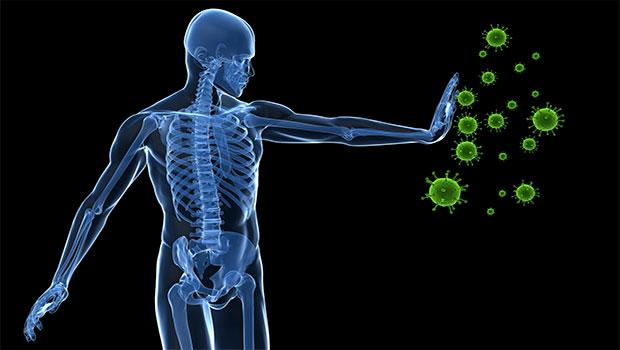 sistema-inmunitario